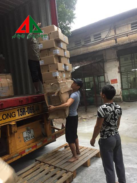 Xếp dỡ container